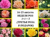 Акция третья роза в подарок