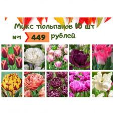 Микс №1 Тюльпаны 10 шт