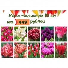 Микс №2 Тюльпаны 10 шт