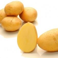 Картофель семенной Зекура (1кг/уп)